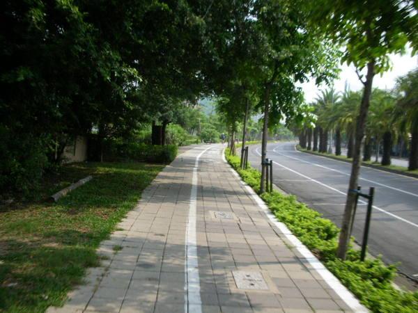 這條路上午很多人騎