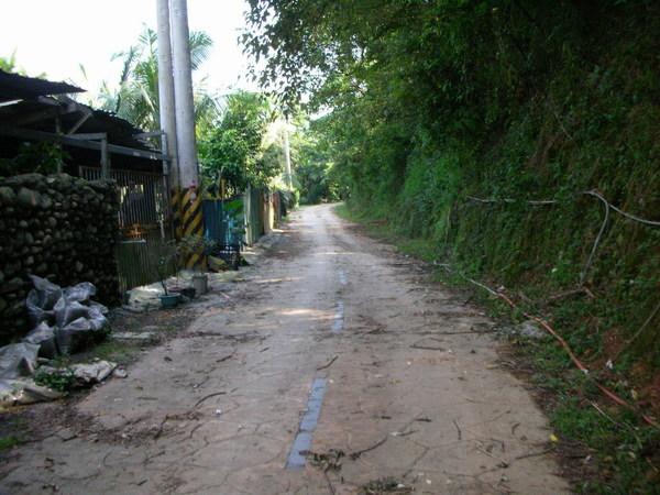 另一條林道。緩坡3公里開始 @@