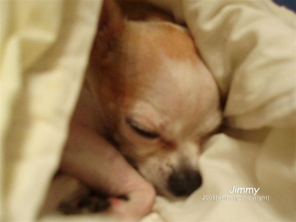 吉米睡相 .像嬰兒ㄎ