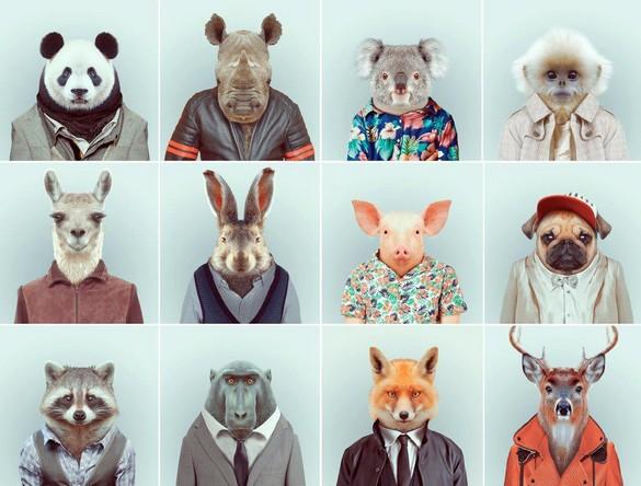 yago-partal-zoo-portraits-02