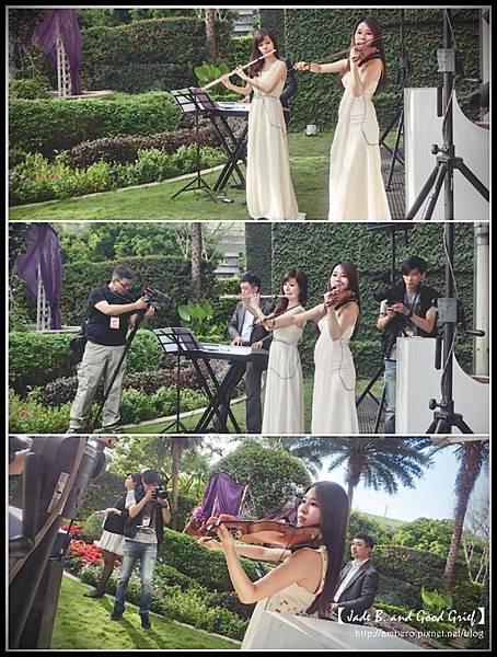 維多麗亞麗星花園小提琴.jpg