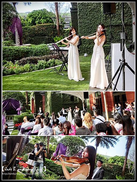 維多麗亞麗星花園小提琴1