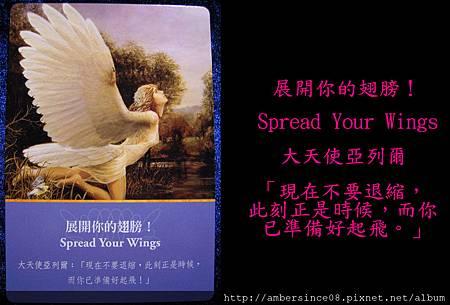 展開你的翅膀!