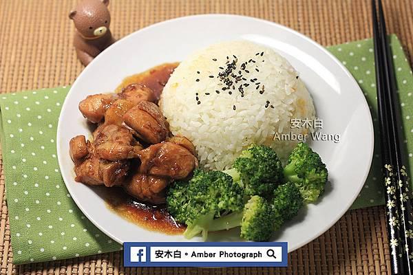 Chicken-rice-20161222D05.jpg
