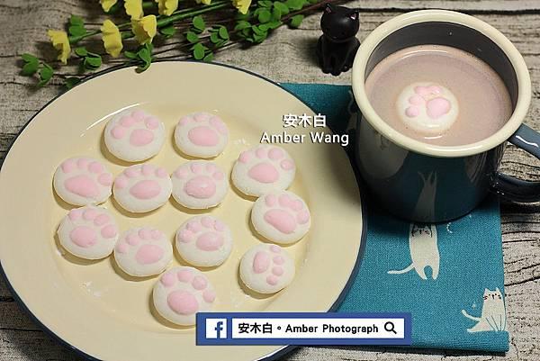 Cat-palm-cotton-candy-amberwang-20170222D011.jpg
