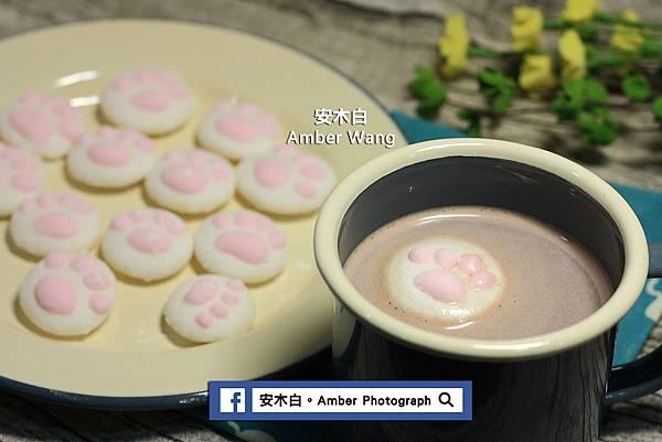 Cat-palm-cotton-candy-amberwang-20170222D012.jpg