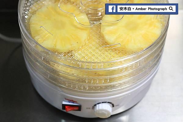Pineapple-dry-slices-amberwang-20170623D08.jpg