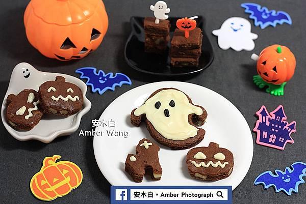 Brownie-amberwang-20171030D012.jpg