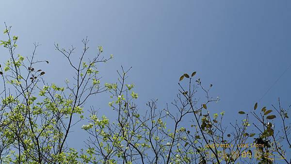 2012.09.01-02_曬裝備啦_香杉營地_1