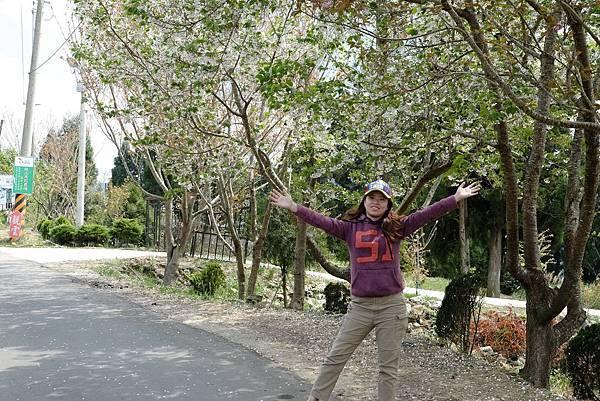 2013.03.24_[桃園復興]恩愛農場_咬一口就上癮的蜜蘋果-76