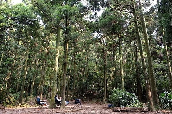 2013.07.27_竹子湖黑森林015.jpg