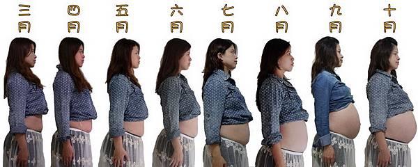 懷孕_v2_調整大小.jpg