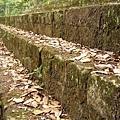 Maya_Copan_(060121.2714).JPG