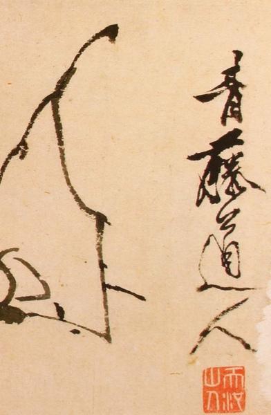 明_徐渭_寫生冊_第一幅_玉蘭_局部(1)_(0021.na).JPG
