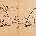 明_徐渭_寫生冊_第一幅_玉蘭_26.3x37.8cm_(0021.na).JPG