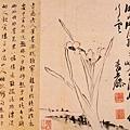 明_徐渭_寫生冊_第八幅_水仙_26.3x37.8cm_(0021.na).JPG