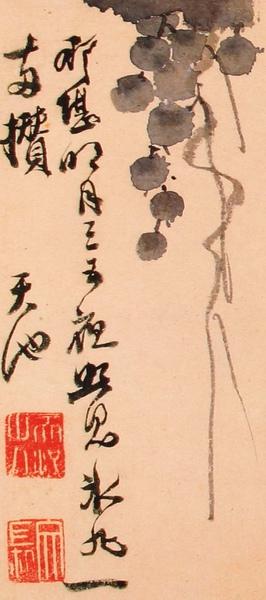 明_徐渭_寫生冊_第五幅_葡萄_局部(2)_(0021.na).JPG