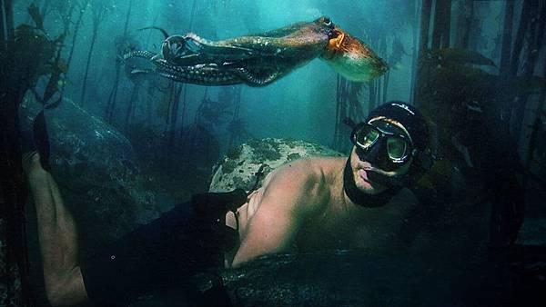 我的章魚老師 My Octopus Teacher (Netflix紀錄片) 4.jpg