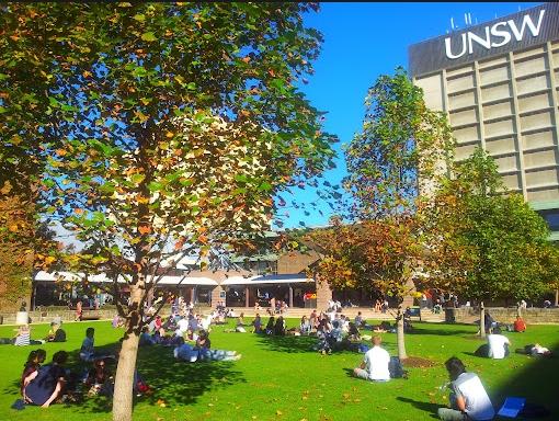 新南威爾斯大學--圖案