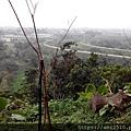 【遊】宜蘭員山《員山公園》公園及忠烈祠201602957