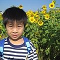 IMG_6612花海.jpg