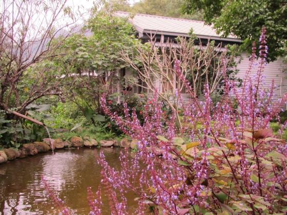 IMG_1182秘密花園1.jpg
