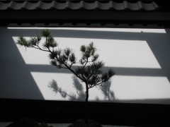 IMG_2155台南4.jpg