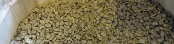 未命名 - 5咖啡4