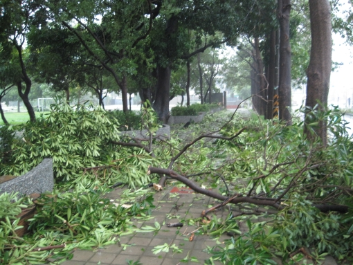 IMG_5639颱風.jpg