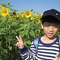 IMG_6613花海.jpg