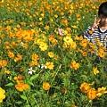 IMG_6632花海.jpg