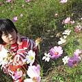 IMG_6652花海.jpg