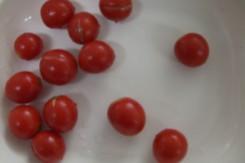 CIMG2492吃蕃茄.jpg