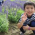 IMG_0304花海.jpg