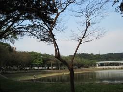 IMG_1782大湖1.jpg