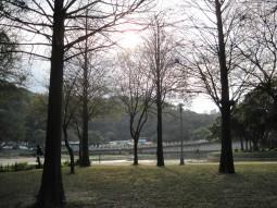 IMG_1783大湖3.jpg