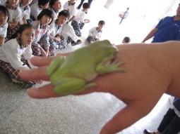 IMG_2310觀賞樹蛙.jpg