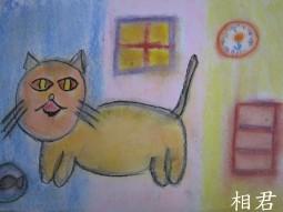 IMG_2716相君貓.jpg