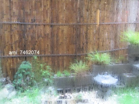 IMG_957下雨天.jpg
