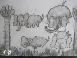 IMG_8600大象.jpg