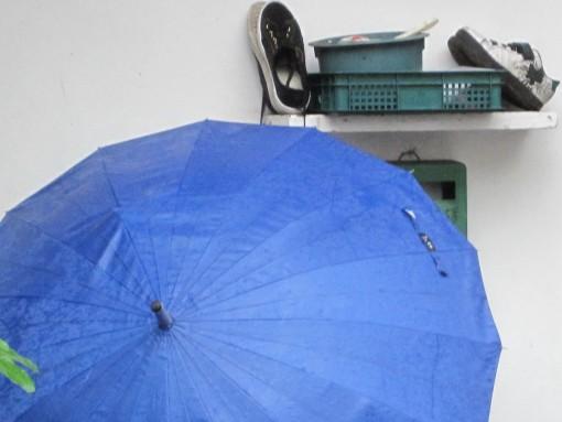 IMG_3692雨中即景1.jpg