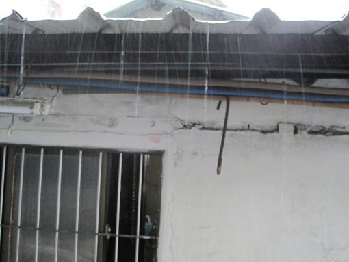 IMG_3709雨中即警9.jpg