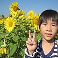 IMG_6616花海.jpg