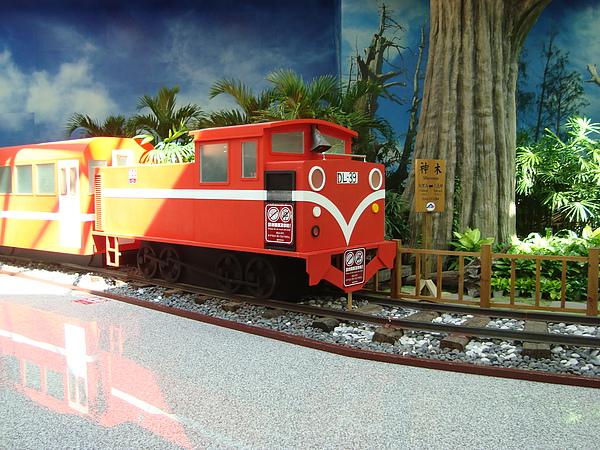 阿里山小火車?!