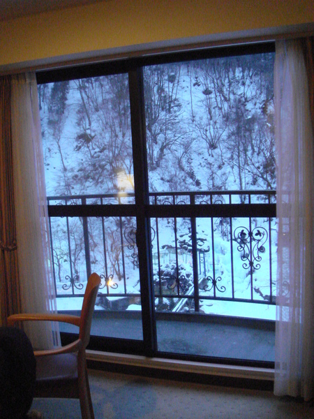 房間窗外景色