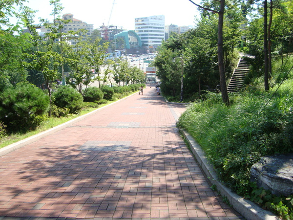 東國大學的坡