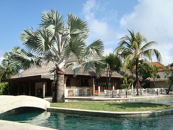 Ramada泳池