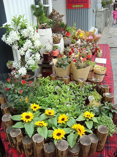 可愛的花店攤