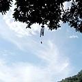 樹上的風玲-1.jpg