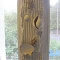 鑲滿貝殼的窗框